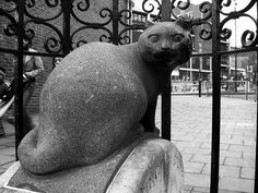 Dick Whittington's cat, Highgate Hill / photo by Chaz Folkes