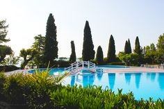 Sirmione, Italy Garden picture with Swimming pool  On the lake - Lago di Garda