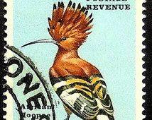 Upupa uccello Botswana-fatti a mano con cornice del francobollo arte 19603