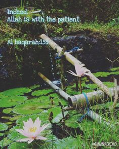 Indeed, Allah is with the patient. 02:153.