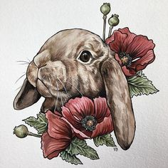 Holland lop 🐰Happy Sunday my dudes! Bunny Tattoos, Rabbit Tattoos, Hase Tattoos, Art Sketches, Art Drawings, Holland Lop Bunnies, Fox Tattoo Design, Tattoo Bein, Rabbit Pictures