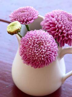 Fresh Luxury vase of flowers Decorating Ideas Large Flowers, Fresh Flowers, Pretty In Pink, Pink Flowers, Beautiful Flowers, My Flower, Flower Vases, Coral Charm Peony, Colorful Roses
