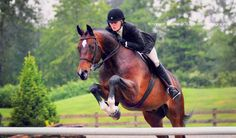 Focus by Equus-Photography.deviantart.com on @deviantART