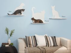 cat silhouette cat shelves | The Refined Feline $325 for three  --  I would TOTALLY use these as the focal point over a couch in a den or living room.  Attractive and useful!