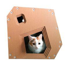 Ideas cats house cardboard for 2019 Cat Furniture, Cardboard Furniture, Furniture Design, Cardboard Cat House, Cat Run, Dog Potty, Super Cat, Pet Fish, Cat Design