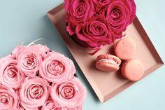 Infinity Flowerbox Bridal Pink und Hot Pink