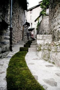 grass carpet winds through a french village
