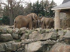 Philadelphia Zoo,