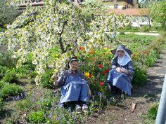 Für uns ist der Klostergarten wichtiger Arbeitsplatz und Erholungsraum in einem. Zu jeder Jahreszeit ist er eine Oase, in der sich Menschen und Tiere wohlfühlen.