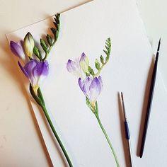 후리지아 freesia #nonameillustrator #illust #illustration #painting #watercolor #일러스타그램 #일러스트 #페인팅 #손그림 #수채화 #flowerstagram #flower #plants #꽃 #꽃스타그램 #꽃그림 #식물