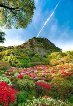 Mifuneyama Rakuen in Saga, Japan :Photo by Ryuji Kawano. Foto Nature, Image Nature, Beautiful World, Beautiful Gardens, Beautiful Places, Beautiful Flowers, Nature Pictures, Japan Travel, Amazing Nature