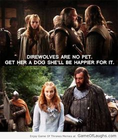Sansa needs a dog