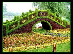 Boxwood Topiary garden figures bridge plant