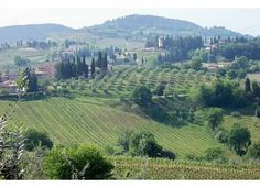 Tuscany Hills of Ulignano Italy