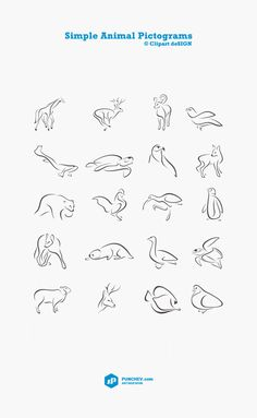 Simple Animal Pictograms by Sergey Punchev, via Behance