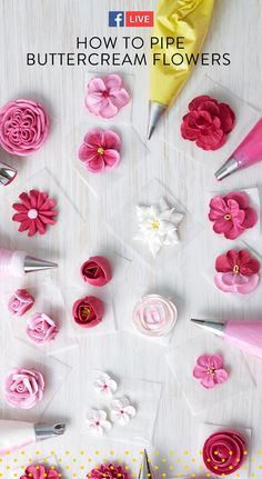 Watch and learn how to pipe five beautiful buttercream flowers! These techniques can also be piped in royal icing. Pipe these flowers ahead of time and store to place onto your desserts! #wiltoncakes #facebooklive #buttercreamflowers #howto #videos #edibleflowers #buttercream #piping #cakes #cakedecorating #buttercreamfrosting #royalicing #flowers #cupcakes #cupcakedecorating