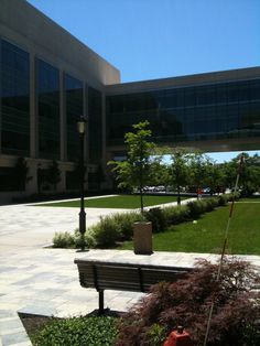 Northwestern University Campus Photos