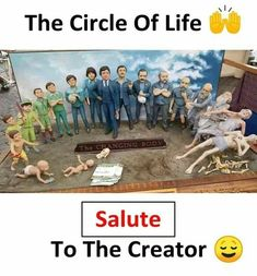 Circle of life General Knowledge Facts, Knowledge Quotes, Reality Of Life, Reality Quotes, Wow Facts, Weird Facts, True Quotes, Funny Quotes, Funny Memes