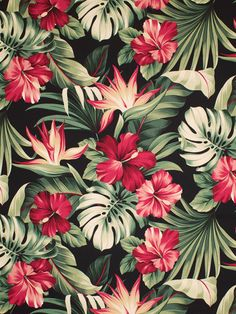 Ideas For Wallpaper Celular Flores Hawaianas Wallpaper Pictures, Love Wallpaper, Pattern Wallpaper, Wallpaper Backgrounds, Motifs Textiles, Tropical Wallpaper, Floral Prints, Art Prints, Cute Wallpapers