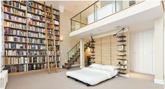 Bookcases and Fancy Living