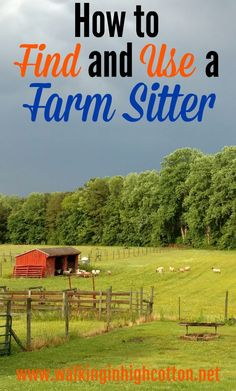 How to Find and Use a Farm Sitter to Enjoy Vacation as a Homesteader...Includes a link to Farm Sitter and Pet Sitter information and chore list PRINTABLES to help you organize for your farm sitter!  via Walking in High Cotton Raising Chickens, Raising Kids, Kids And Parenting, Parenting Hacks, Modern Homesteading, Chore List, Mini Farm, Hard Workers, Chores For Kids