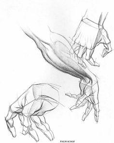 Burne Hogarth - Drawing Dynamic Hands 5