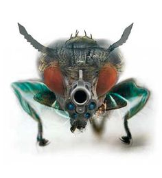 Evil Fly by Evi Apostolou Bugs, Insects, Cyborgs, Neurons, Gallery, Sick, Remote, Muscle, Animals