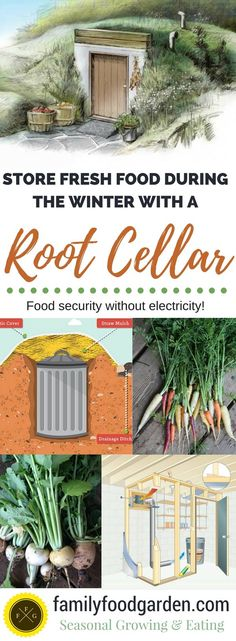Root Cellars: Store Fresh Food with no Electricity - Growing one's own fruit and vegetables is a healthy, environmentally conscious and deliciously rewarding, but can be impractical outside of the growing season. An old practice that's making a comeback is the use of root cellars. Image by familyfoodgarden.com
