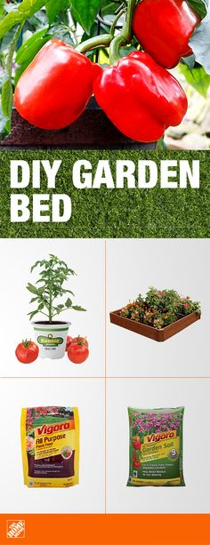 An in-ground garden allows you to personalize your yard while giving your plants a place to thrive. Use Vigoro Soil, specifically formulated with rich organic matter and high-quality nutrients that help give your fruits, veggies and flowers what they n Vegetable Garden For Beginners, Gardening For Beginners, Gardening Tips, Gardening Websites, Gardening Services, Gardening Books, Gardening Gloves, Hydroponic Gardening, Indoor Gardening