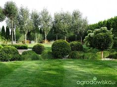 Organic Gardening Tips Key: 1542282089 Cottage Garden Design, Backyard Garden Design, Garden Landscape Design, Garden Pool, Modern Planting, Landscape Nursery, Garden Planter Boxes, Landscape Architecture Drawing, Garden Canopy