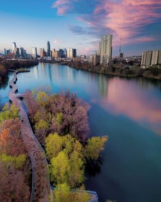 Wherther you're ready to buy now or are just starting to look at homes in Austin. Our Free Austin Homebuyer Guide will be a tramendous resource. Austin Homes, Austin Texas, Austin Skyline, Home Buying Process, Go Outside, The Outsiders, Beautiful Pictures, Things To Come, Texas Things