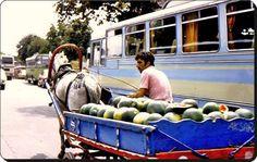 Istanbul,1970
