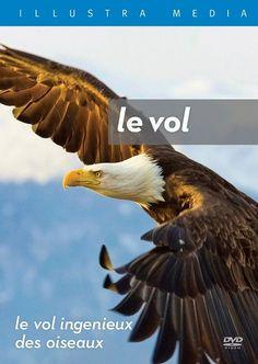Flight: French - DVD