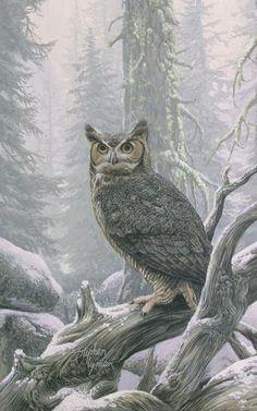 Sounds of Silence, Wildlife owl art by Stephen Lyman.