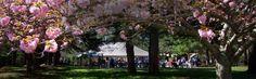 Timberlake Earth Sanctuary, Whitsett NC | Winston-Salem, Triad, Wedding Venue |