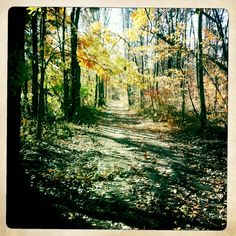 I love trail running!