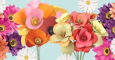Paper Flower Kits - Paper Source at Gifts On The Go