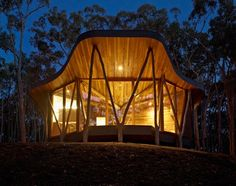 A House in the forest, Australia. Trunk House by Paul Morgan Architects.