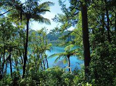 The Blue Lake - North Island - 2013