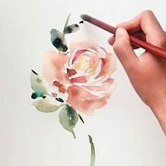 Open rose speed painting. #florals #flowers #rose #stem #art #paint #painting #floralpainting #flowerpainting