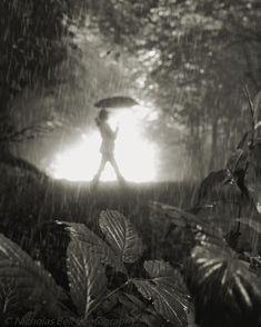 Nicholas Bell - Black and white photography / rain / mood / fog /Magic Umbrella