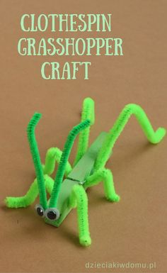 clothes crafts for kids ~ clothes crafts . clothes crafts for kids . clothes crafts for kids activities . clothes crafts for toddlers . clothes crafts for preschool Insect Crafts, Bug Crafts, Preschool Crafts, Kids Crafts, Quick Crafts, Popsicle Stick Crafts For Kids, Camping Crafts For Kids, Decor Crafts, Camping Theme Crafts