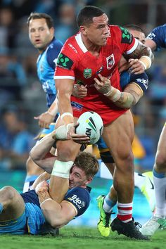 a12121dac44 61 best st george dragons images | Rugby men, Rugby players, Dragon