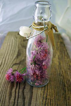 Schnittlauchblütenessig – Very (iss)ima Glass Vase, Water Bottle, Spices And Herbs, Homemade, Essen, Water Bottles
