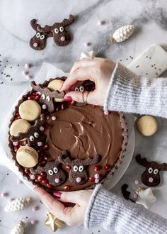 Gingerbread Chocolate Tarte Recipe with Wild Cranberries Berry Smoothie Recipe, Easy Smoothie Recipes, Cinnamon Cream Cheese Frosting, Cinnamon Cream Cheeses, Tart Recipes, Snack Recipes, Coconut Milk Smoothie, Homemade Frappuccino, Chocolate Pies