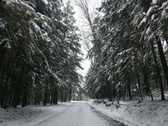 Back roads and snow... perfect!