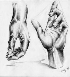 Drawing drawing - hands by adam gillespie. Anatomy Sketches, Anatomy Drawing, Anatomy Art, Drawing Sketches, Human Figure Sketches, Figure Sketching, Academic Drawing, A Level Art Sketchbook, Hand Drawing Reference