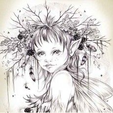 ART PRINT THE HEDGELING - CHILD OF THE HEDGEROW Fairy Drawings, Fantasy Drawings, Fantasy Kunst, Pencil Art Drawings, Art Drawings Sketches, Fantasy Artwork, Fairy Sketch, Fairy Coloring Pages, Angel Drawing
