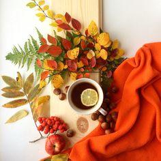 #осень осень #чай #чашкачая #орехи #рябина рябина кудрявая #autumn Instagram, Tableware, Folk Art, Breakfast, Brown, Nature, Inspiration, Kaffee, Morning Coffee