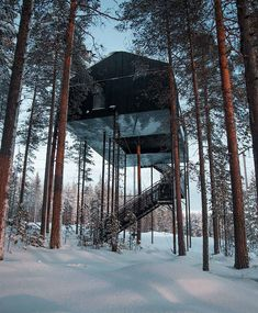 Beautiful modern glass cabins, suspended 33-ft off the ground! Book them for a unique stay in Sweden!